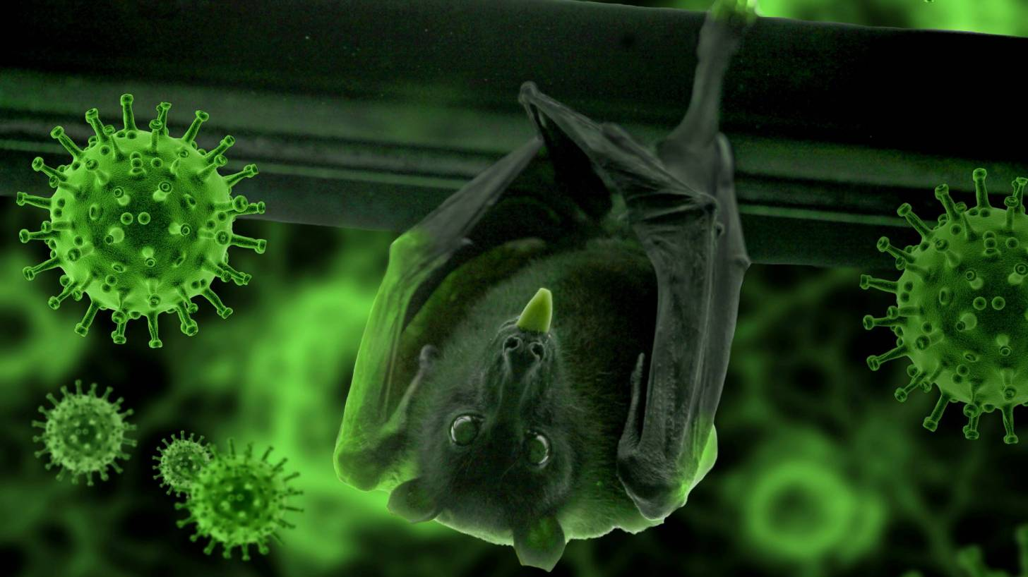 depiction of virus with a bat hanging