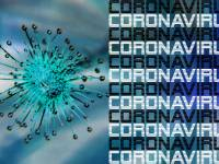 coronavirus depiction and words