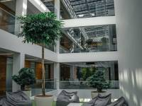 interior of building with trees