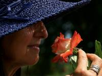 woman in blue hat smelling a flower