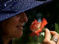 woman in blue hat smelling a flower